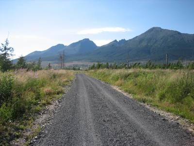 Lesné cesty, Zvážnice, Približovacie linky